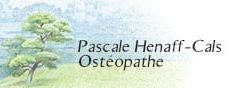 Une ostéopathie qui prône la réharmonisation du corps dans sa globalité – Mios